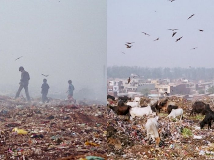 2020, Tumpukan Sampah di India Diprediksi Lebih Tinggi dari Taj Mahal