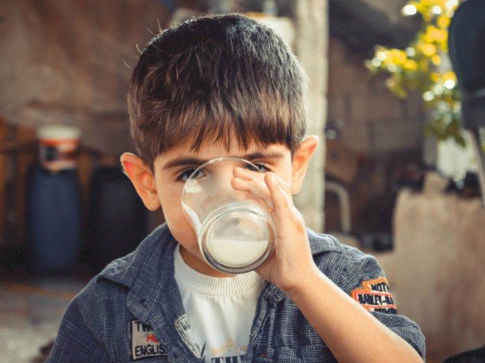 12 Jenis Susu dan Manfaatnya yang Kamu Harus Tau