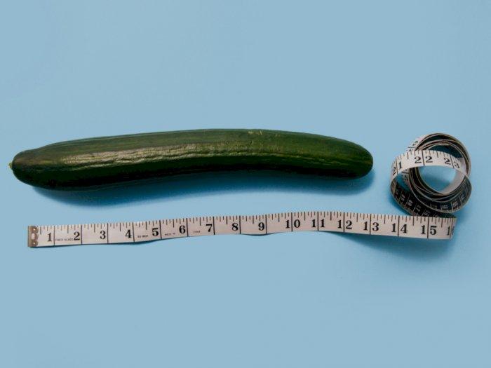 Benarkah Masturbasi Bikin Ukuran Penis Mengecil? Ini Penjelasannya