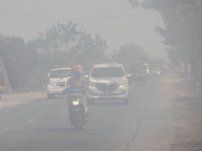 Polda Kepulauan Riau Usut 15 Kasus Karhutla