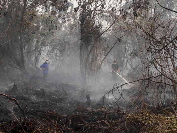 Kemenlu Nilai Indonesia Belum Perlu Bantuan Atasi Karhutla