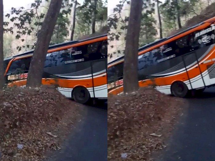 Ikuti Petunjuk GPS, Bus Ini Malah Tersasar ke Hutan Belantara