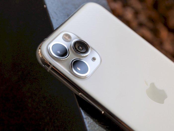Smartfren Berencana Hadirkan Seri iPhone 11 Resmi di Indonesia