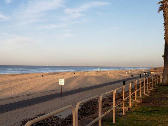 176 Orang Tersengat Ikan Pari di Pantai California
