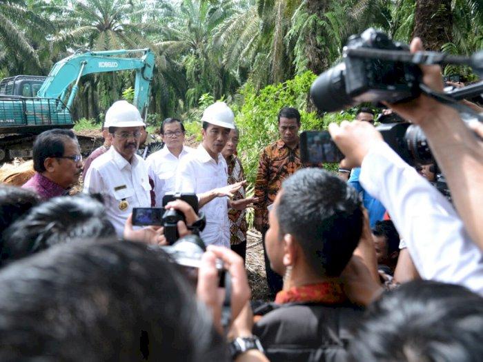 Bea Masuk Sawit Turun, India Minta Indonesia Beli Beras dan Gula