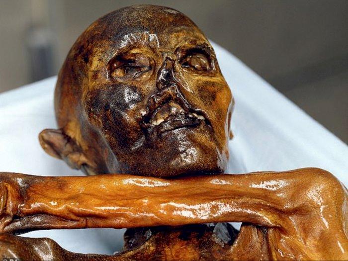 Mengungkap Perjalanan Otzi, Mumi 5.300 Tahun Tertua di Eropa