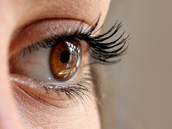 3 Cara Mengatasi Kerutan dan Garis Halus di Bawah  Mata