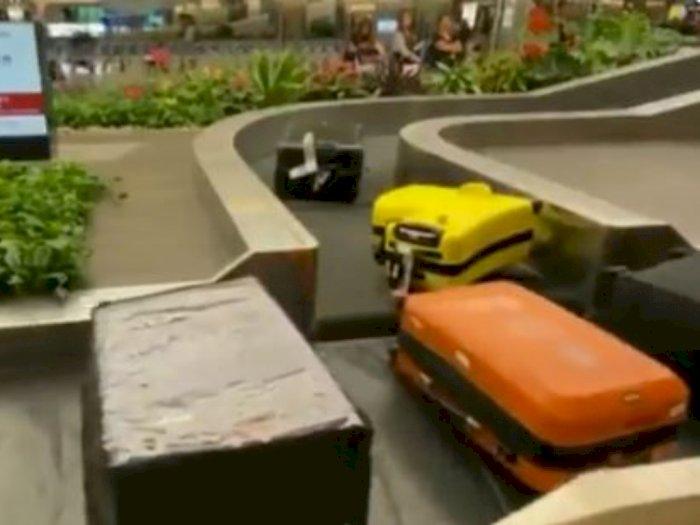 Di Singapura, Bagasi Pesawat Saja Bisa Antre