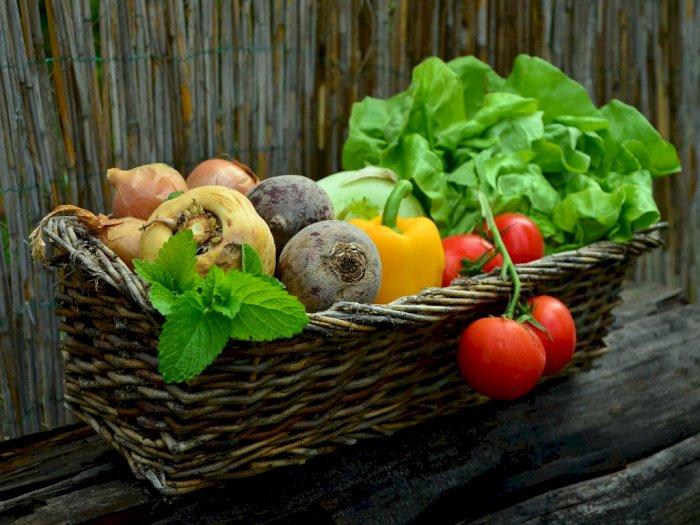 Ternyata! Warna Sayur dan Buah Punya Manfaat Masing-Masing Lho