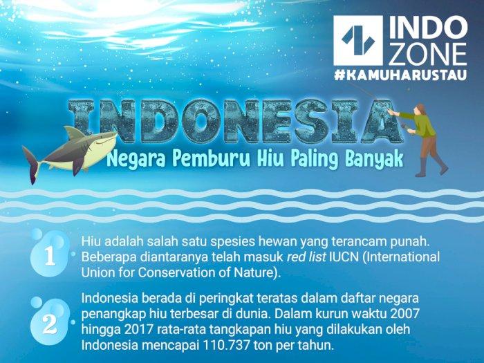 Indonesia, Negara Pemburu Hiu Paling Banyak