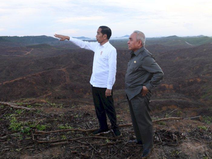 Kesan Presiden Jokowi setelah Tinjau Lokasi Ibu Kota Baru