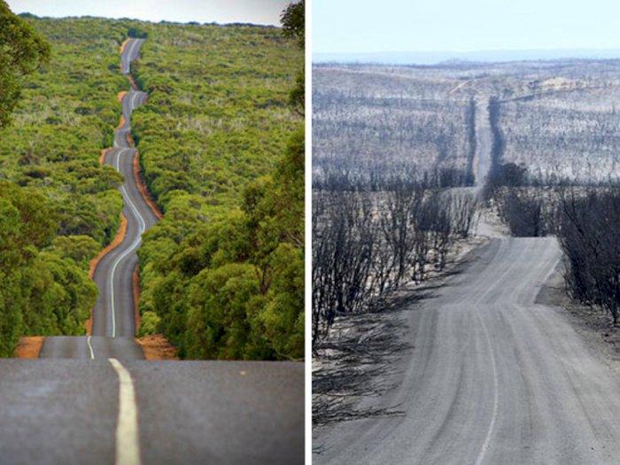 Potret Pilu Sebelum dan Sesudah Kebakaran di Australia yang Buat Sedih