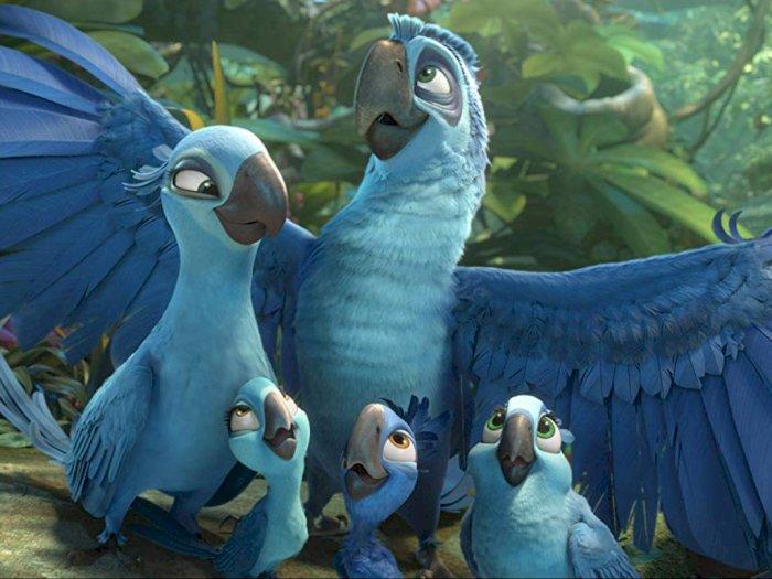 Rio 2 2014 Petualangan Burung Macaw Langka Di Alam Liar Indozone Id