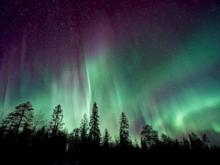 Ini 7 Fakta Menarik dari Si Cantik Aurora yang Buat Mata Terpesona