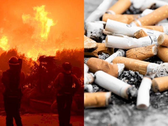 Ketahuan Buang Puntung Rokok di Australia Bisa Didenda Rp150 Juta