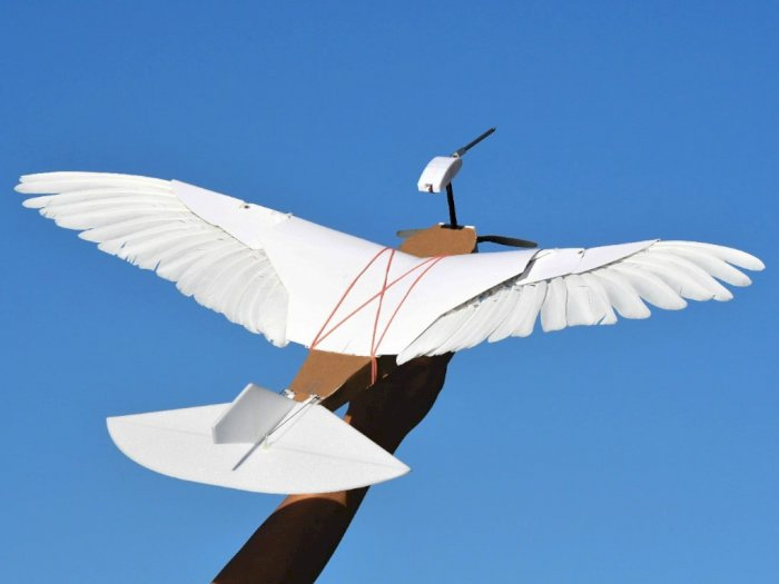 Drone Buatan Ilmuwan di Stanford University Berbentuk Seperti Burung