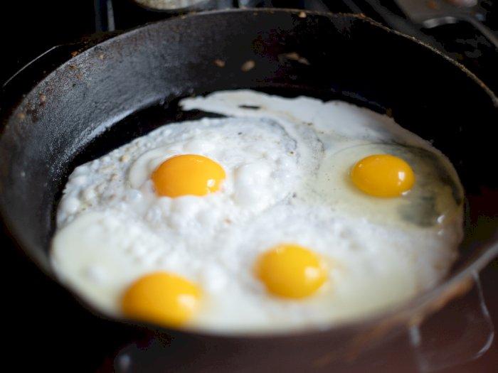 Makan 2 Butir Telur Setiap Hari, Ini Manfaat yang Kamu Dapatkan