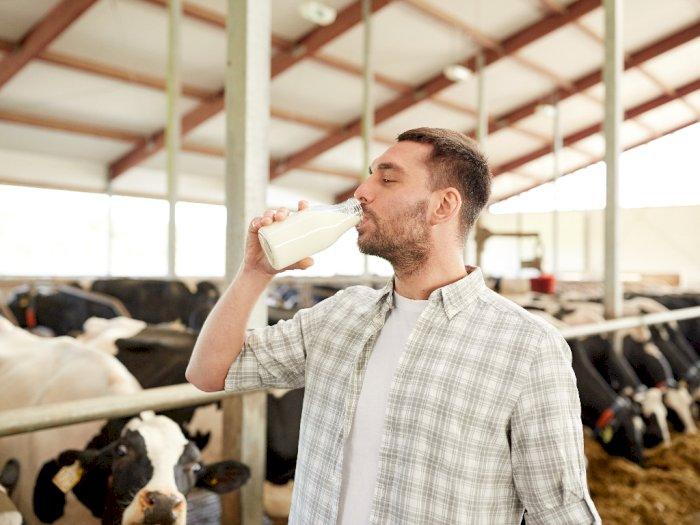 Bukan Hanya Anak-anak, Ini Manfaat Minum Susu saat Dewasa