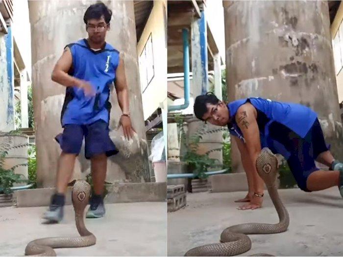 Greget! Pria Ini 'Break Dance' di Depan Ular Kobra