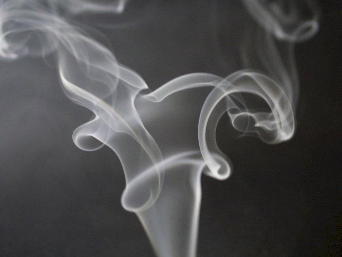 Ini 3 Penyebab Orang yang Tidak Merokok Bisa Terkena Kanker Paru-paru