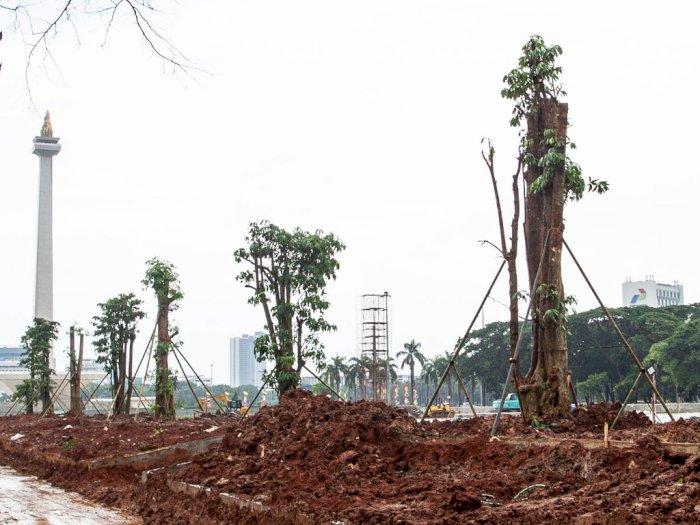 FOTO: Sempat Nyaris Gundul, Monas Kembali Ditanami Pohon