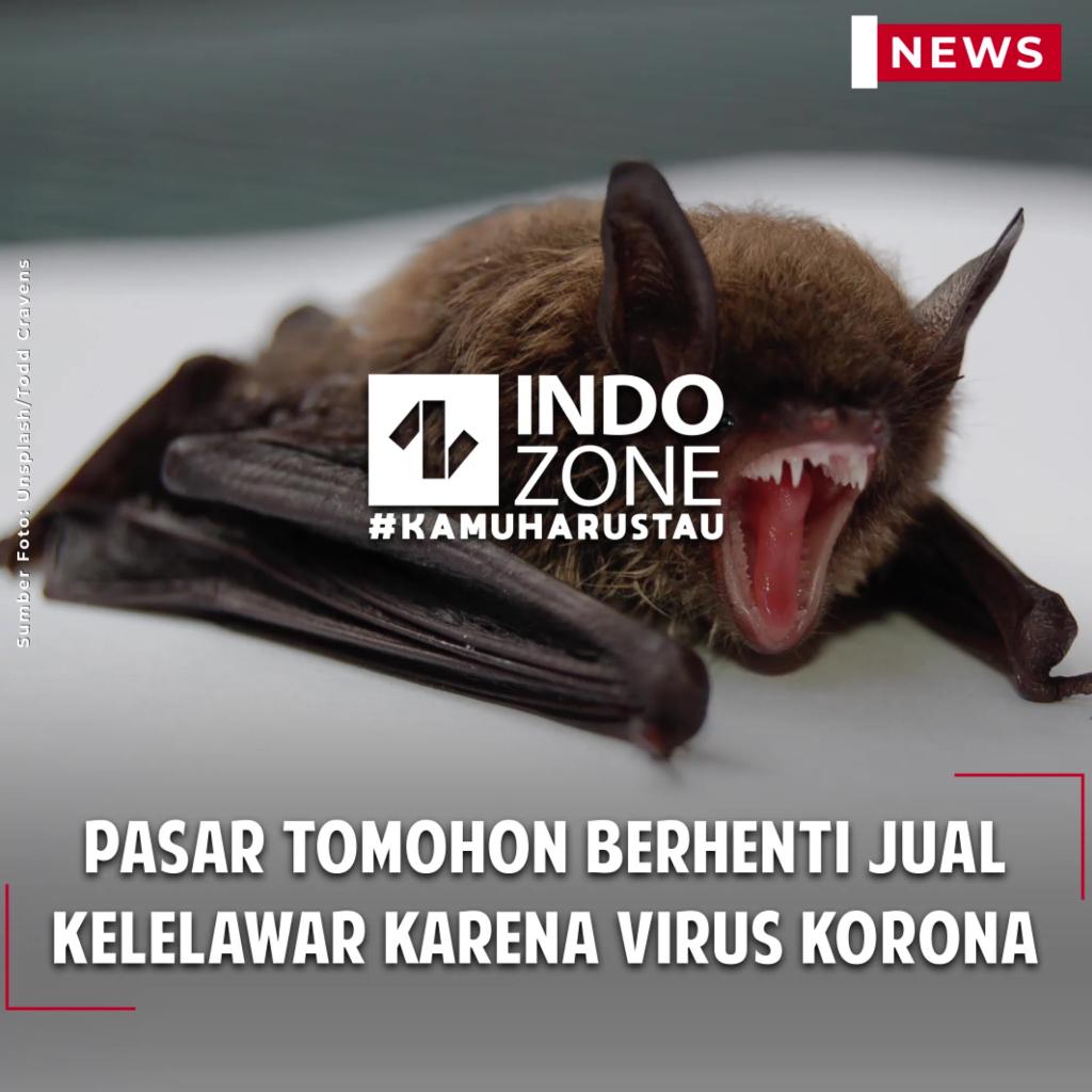 Pasar Tomohon Berhenti Jual Kelelawar Karena Virus Korona