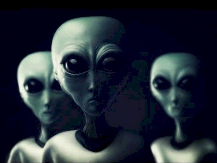 Grey, Ras Alien yang Paling Sering Muncul