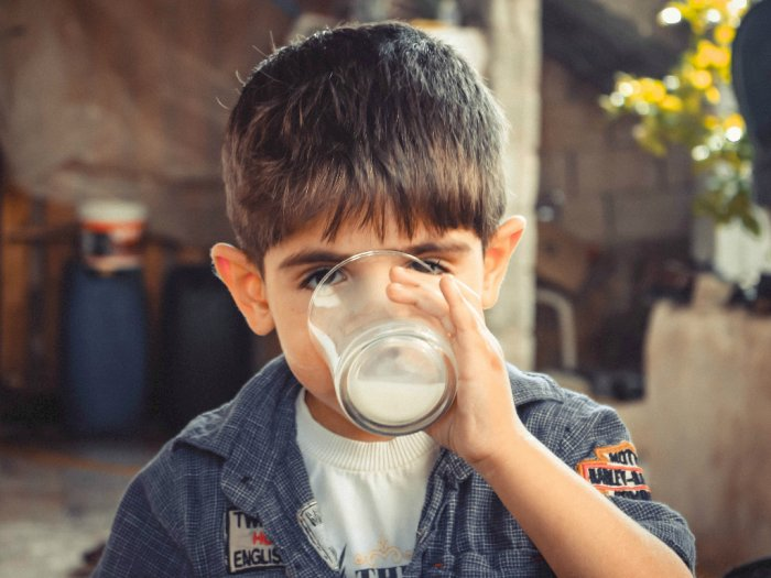 Mom Harus Tahu Ini Manfaat Minum Susu Sapi Asli Untuk Anak