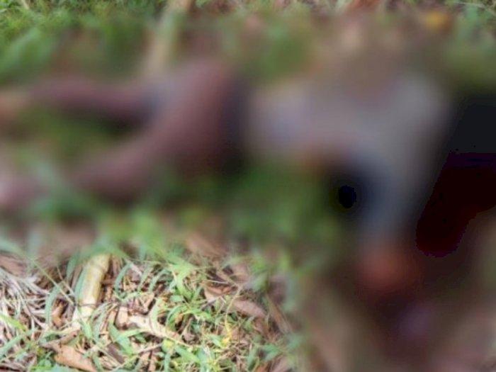 Warga Gempar, Ada Jenazah Remaja Membusuk di Sei Semayang