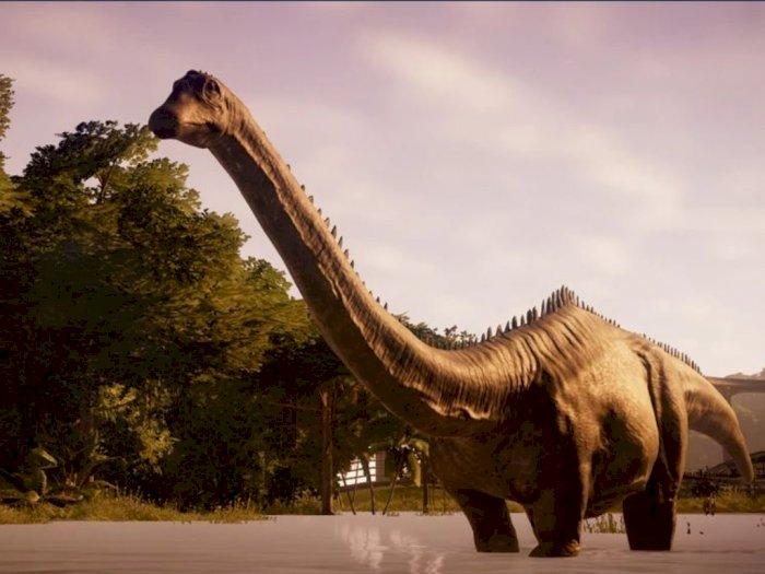 Diplodocus, Dinosaurus Terpanjang yang Pernah Ditemukan