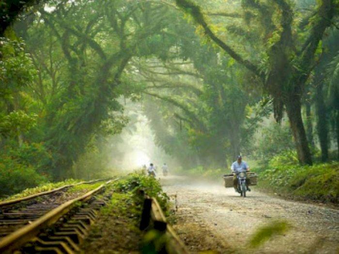 Padang Halaban View, Lokasi Indah di Labura Seperti di Negeri Dongeng