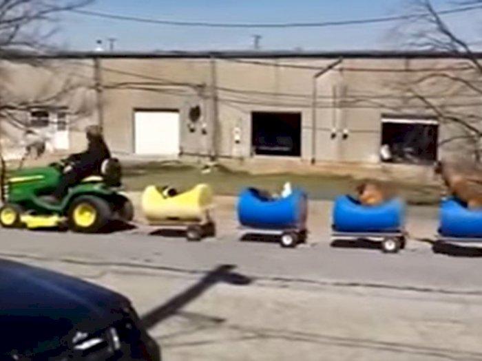 Pria Ini Bikin Kereta Khusus untuk Anjing, Penampakannya Bikin Gemas!