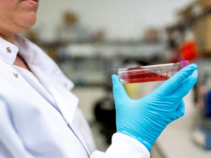 Rapid Test Positif Belum Tentu Terinfeksi Virus Corona, Benarkah?