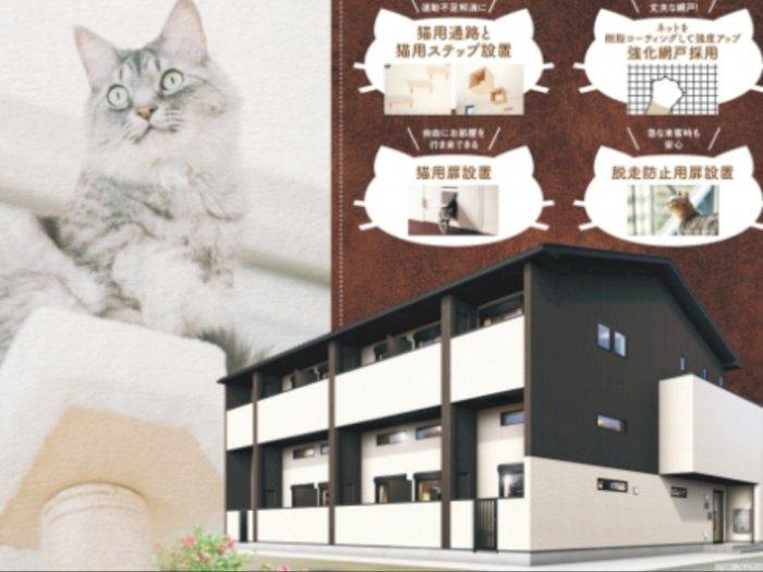 Apartemen Unik di Jepang, Sengaja Didesain untuk Pencinta Kucing
