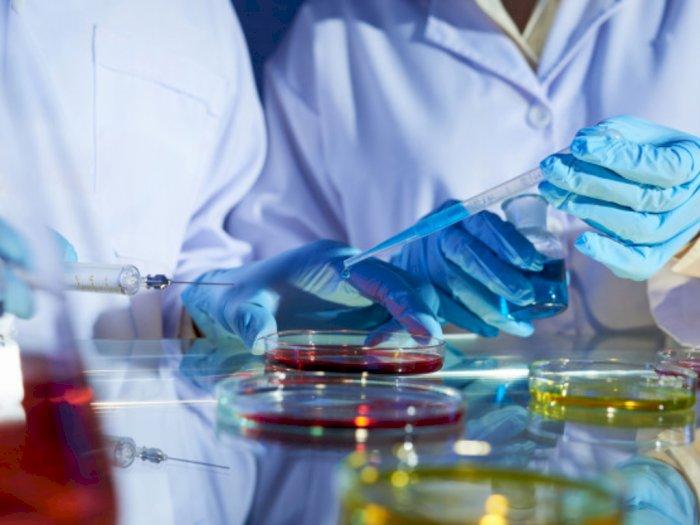 Hadapi Virus Corona, Peneliti Indonesia Harus Ikut Dilibatkan