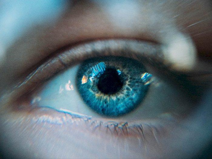 Hasil Studi Menyebut Virus Corona Dapat Menginfeksi Mata