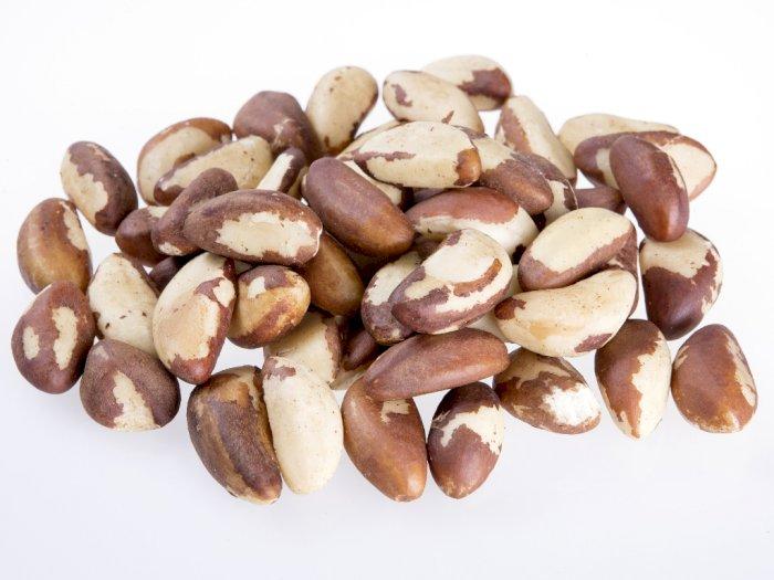 3 Manfaat Kesehatan yang Didapatkan saat Kamu Konsumsi Kacang Brazil