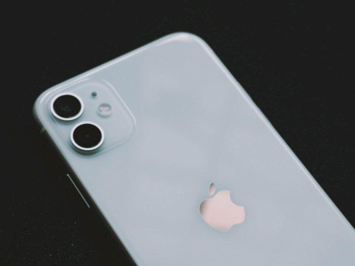 Salip iPhone XR, iPhone 11 Kini Jadi Smartphone Paling Populer di Dunia