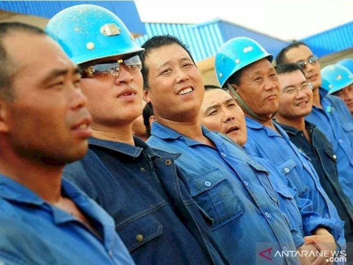 Dalih Terbaru Pemerintah Terkait Kedatangan 500 TKA asal Tiongkok ke Indonesia