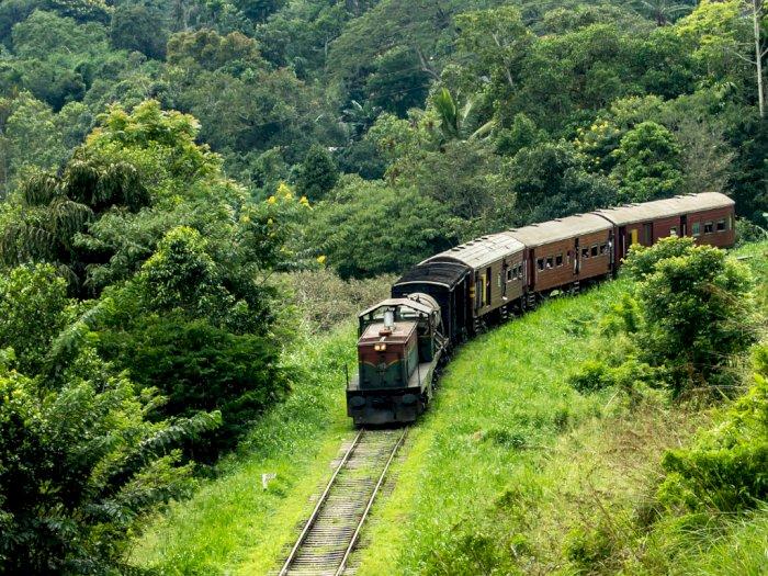 Sikap Mulia Pemilik Kafe Terhadap Turis-turis Kehabisan Uang di Sri Lanka