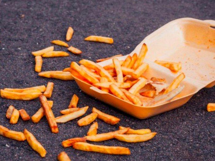 'Ups, Belum Lima Menit' Makanan Jatuh Masih Layak Makan, Mitos atau Fakta?