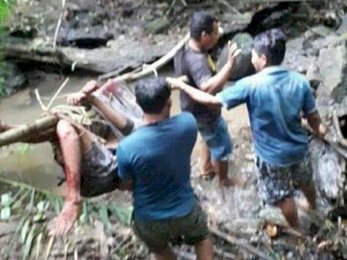 Tewas Dililit Ular saat Mendaki Gunung, Ternyata Remaja SMP Ini Duluan yang Ganggu Ularnya