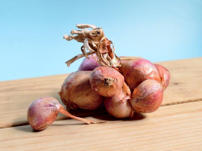 3 Bahan Herbal Ini Merupakan Sumber Antibiotik untuk Jaga Kesehatan