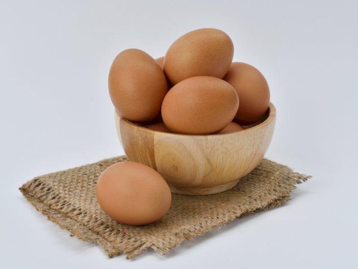 Stok Melimpah, Pemasok Terpaksa Buang 250 Ribu Telur
