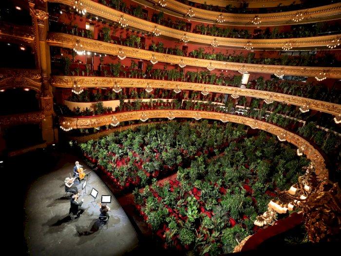 FOTO: Ribuan Tanaman Jadi Penonton Konser di Spanyol