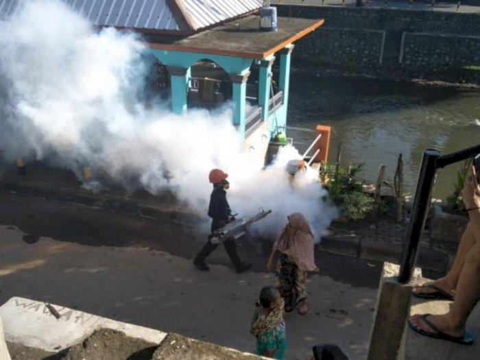 Kasus DBD di Mataram Sebabkan Dua Orang Meninggal Dunia