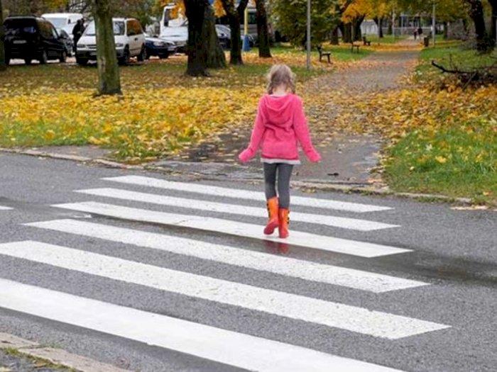 Pintarnya Anjing Ini Kawal Anak-Anak yang Akan Menyeberang Jalan