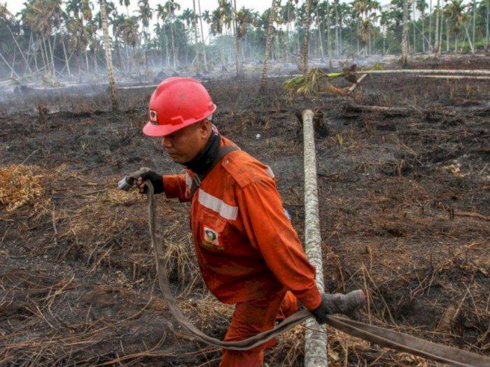 BMKG Medan: Ada 33 Titik Panas Terpantau di Sumatera Utara