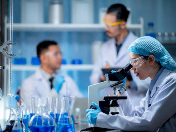 Virus Corona Belum Selesai, Flu Babi Jenis Baru Ditemukan di Tiongkok