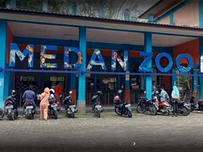 Kebun Binatang Medan Kembali Dibuka 5 Juli
